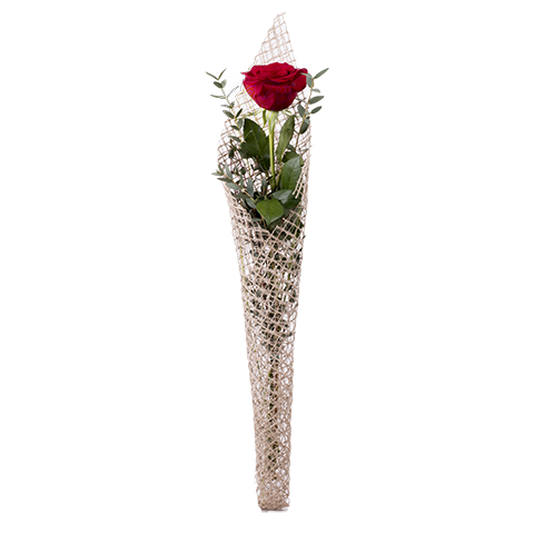 Rosa roja con red de rafia