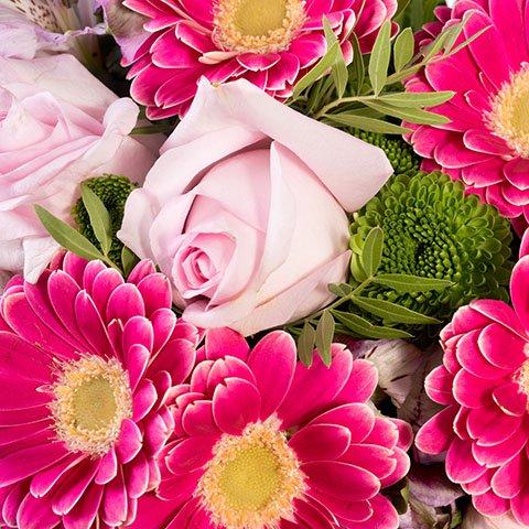 Diamant Rose : Roses et gerberas