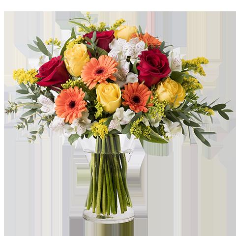 Floral Energy: Mixed Orange Flowers