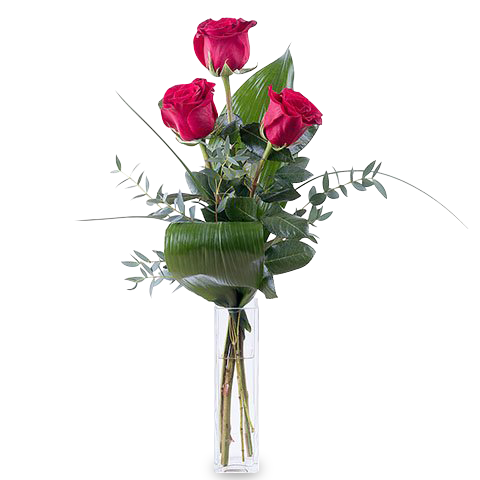 Send 3 Red Roses To Say I Love You Valentines Flowers Floraqueen