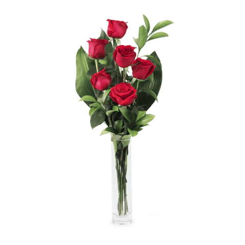 Amour Hypnotique : 6 Roses Rouges