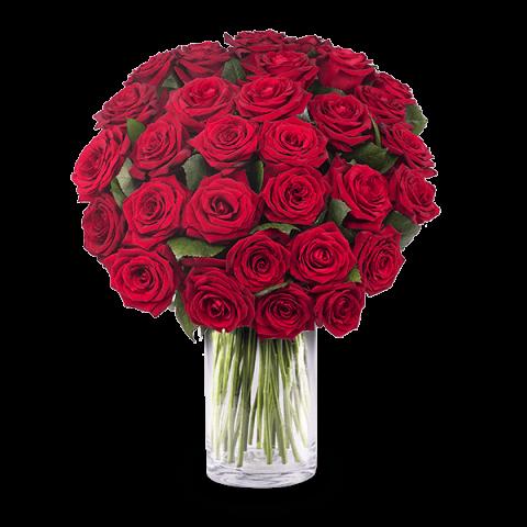 Mazzo Di Fiori 30 Euro.Mazzo Di 30 Rose Rosse A Domicilio Floraqueen