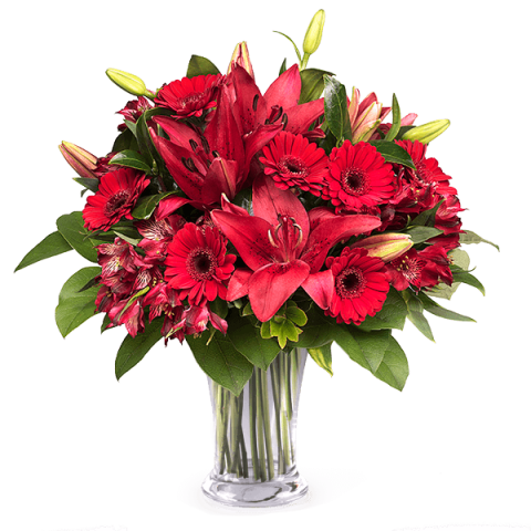Red Carpet: Gerberas and Lilies