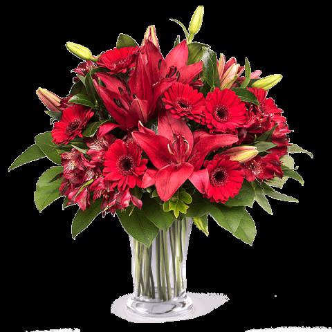 Roter Teppich: Gerbera und Lilien