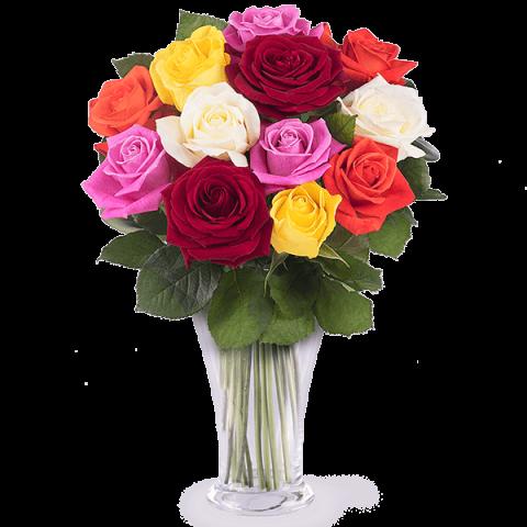 Farben Symphonie: 12 strahlende Rosen