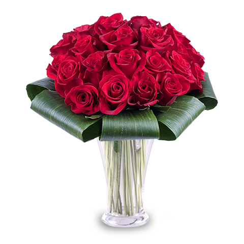 25 Red Roses Rose Bouquet Delivery Floraqueen