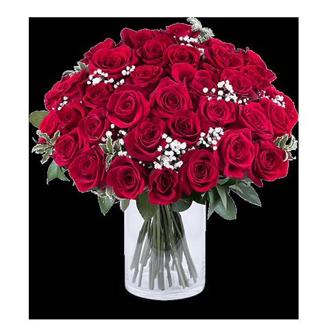 35 Rote Rosen Der Liebe Im Strauss Online Rosenversand Weltweit