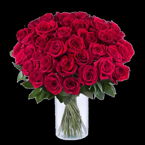 Envía Ramos De Rosas A Domicilio 40 Rosas Rojas Floraqueen