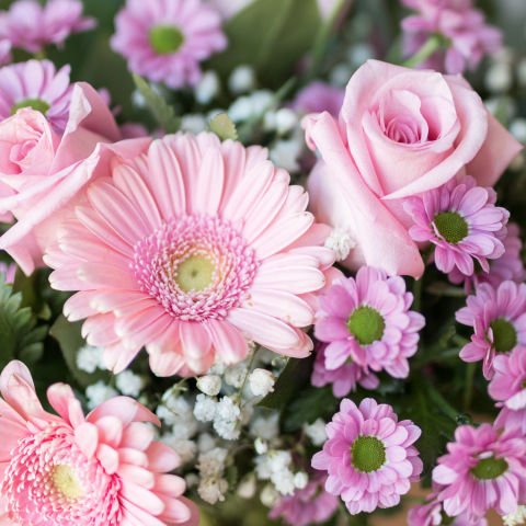 Sincere Smile: Pink Roses and Gerberas