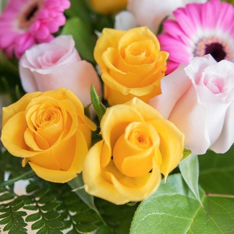 Pink and yellow roses colourful rose bouquet floraqueen vibrant sensations yellow and pink roses mightylinksfo
