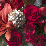 Magia: lilie iróże